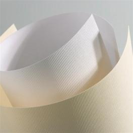 Karton wizytówkowy LINIE (kolor biały)